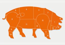 schweinezerlegung-header